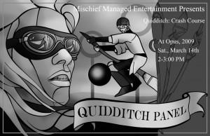 Quidditch Panel